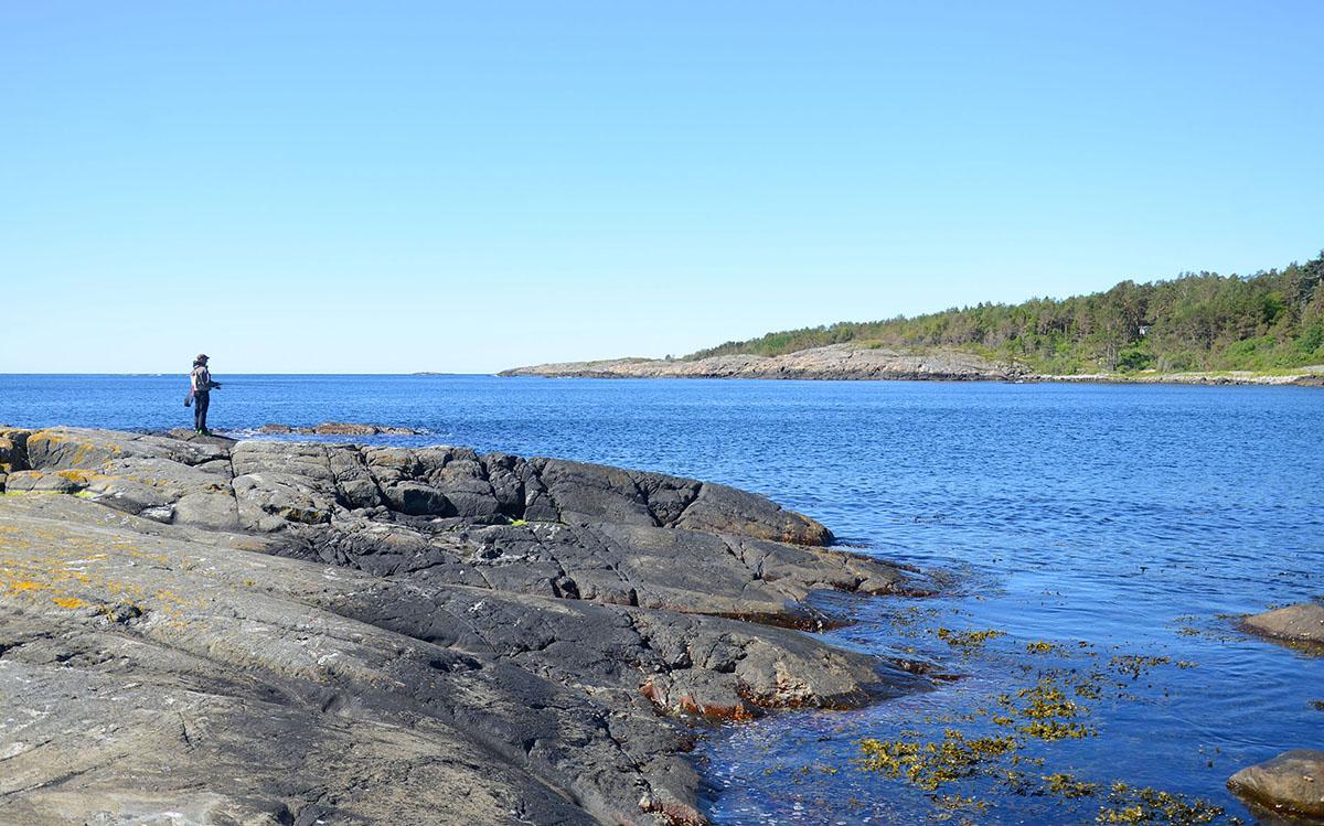 Sportsfisker på Bjellandstrand, Tromøy, Arendal – en av mange gode fiskeplasser langs ytre Tromøy. (Foto: Øivind Berg)