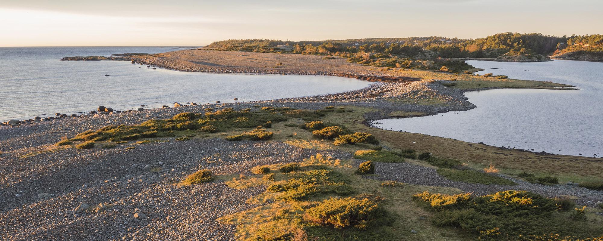 Tromlingene ligger på utsiden av Tromøy og er en viktig raste- og hekkeplass for fugl i Raet nasjonalpark. Foto: Øystein Paulsen